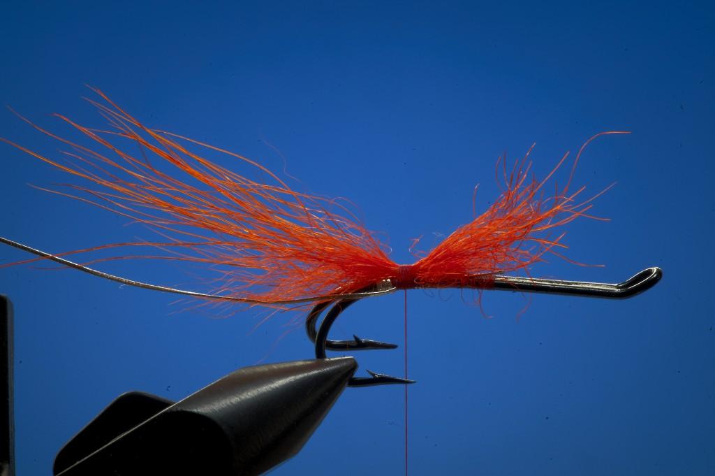Tying a shrimp fly