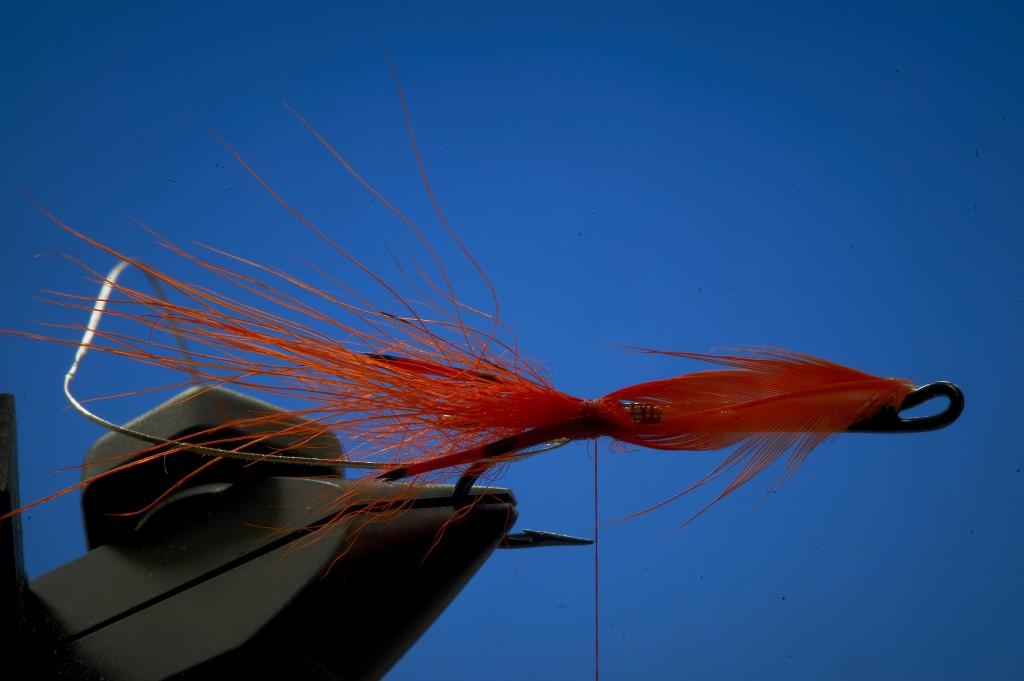 tying prawn flies