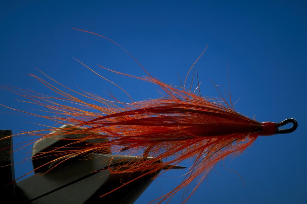 prawn fly tying