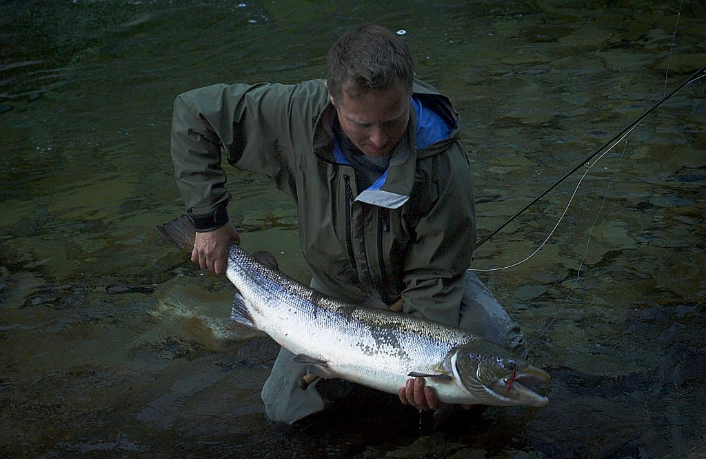 General Practitioner a super fly for late salmon