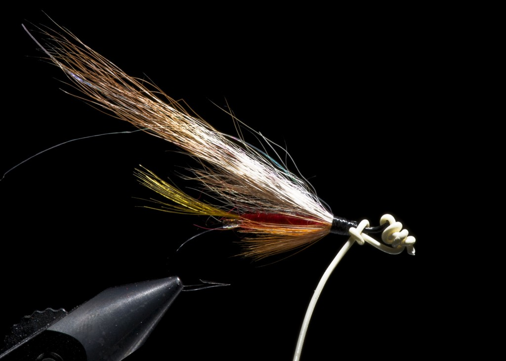 Single hook Riffling Hitch salmon fly tied with Portland Hitch