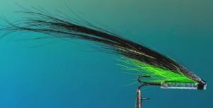 Fishmadman tube Sunray shadow salmon fly