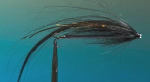 Big black sunray shadow tube fly for salmon