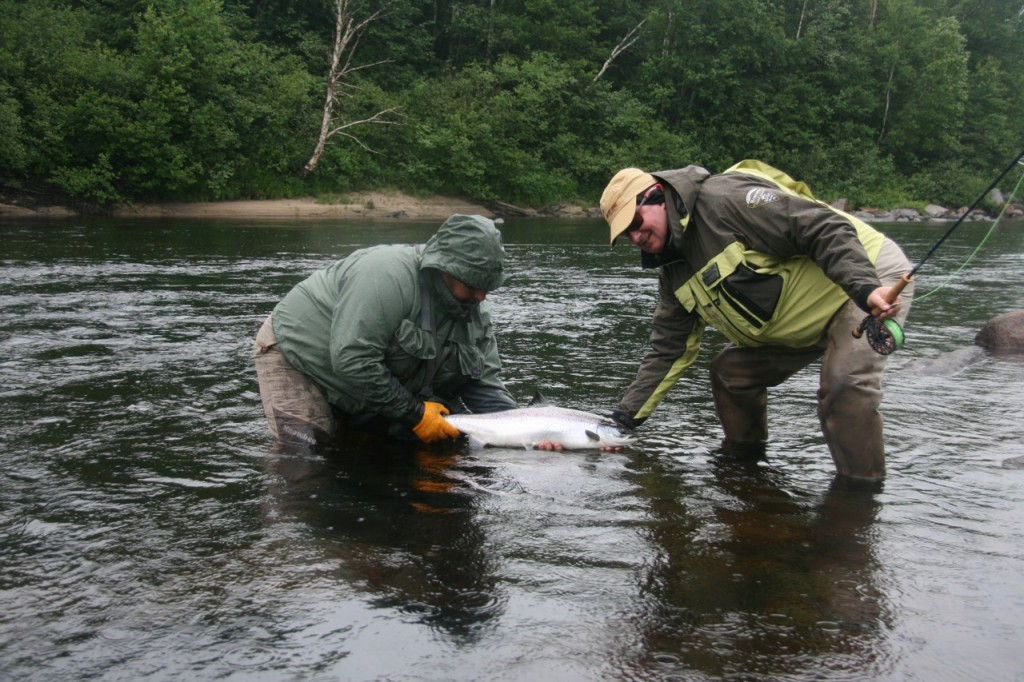 upper Moisie River in Quebec salmon