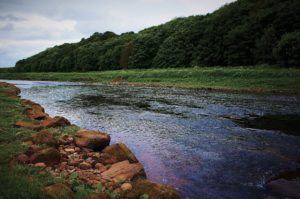 The upper part of Morphy Dyk pool at the North Esk
