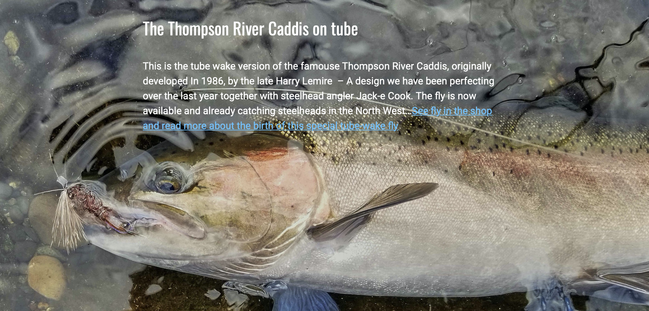 The Thompson River Caddis on tube