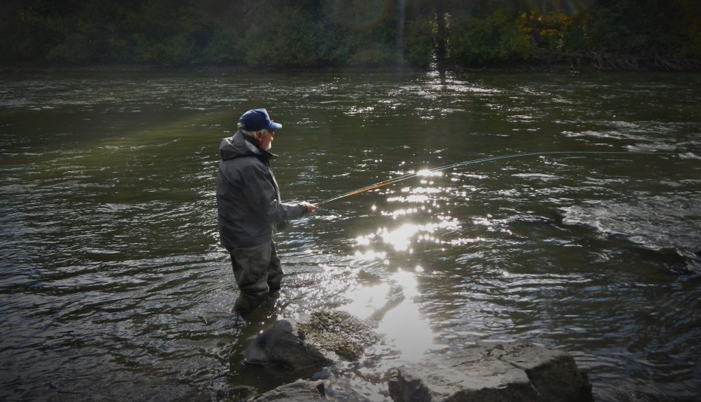 top water fishing steelhead