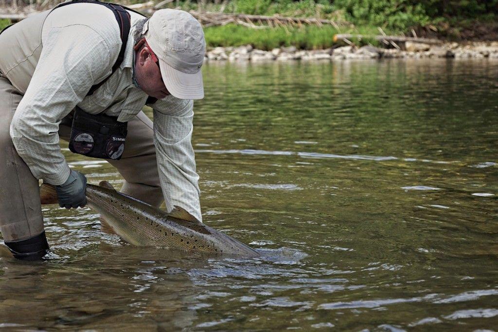 Ian Martin salmon
