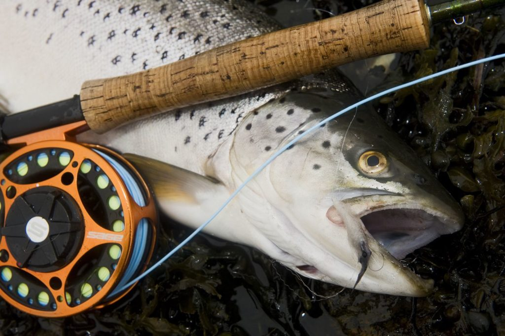 L-RIG sea-trout fly