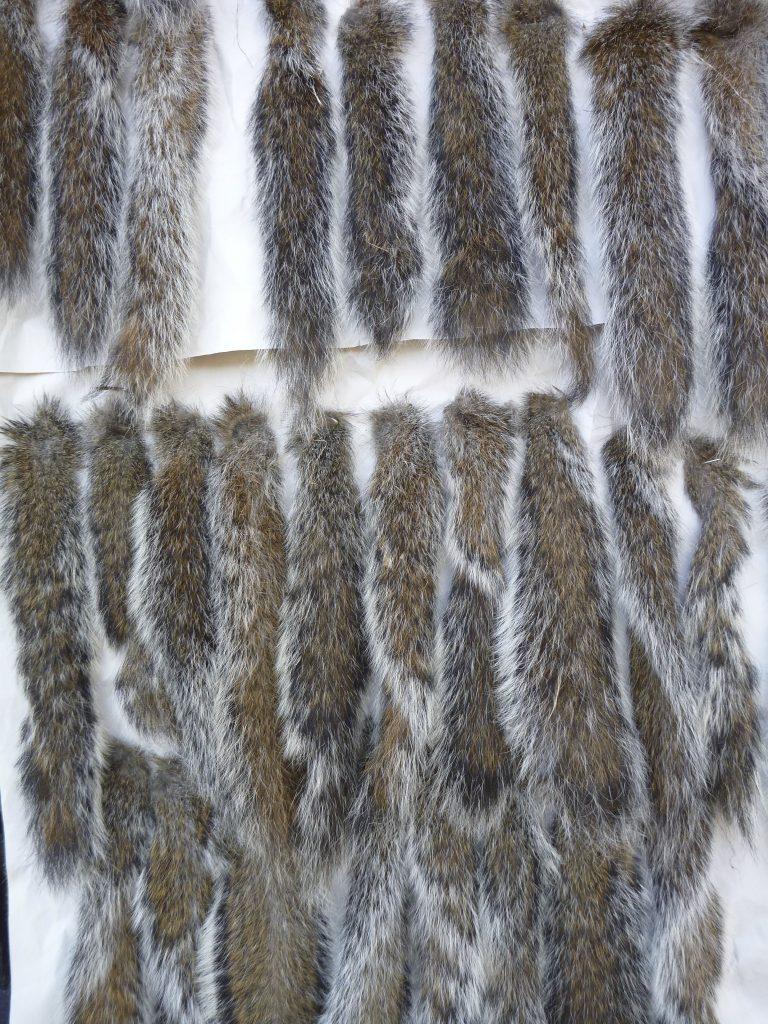 riffling hitch tails
